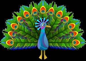 peacock-154128_640