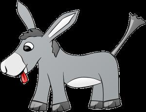 donkey-310798_640