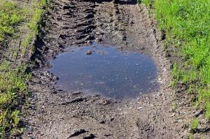 mud-453891_640