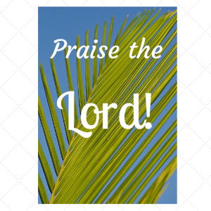 Praise the Lord....
