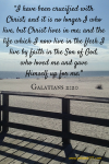 """Galatians 2_20-""""I have been crucified with Christ; and it"""