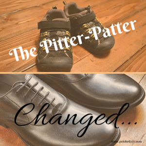 The Pitter-Patter