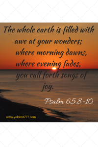 The whole earth is filled with awe at your wonders; where morning dawns, where evening fades, you call forth songs of joy.