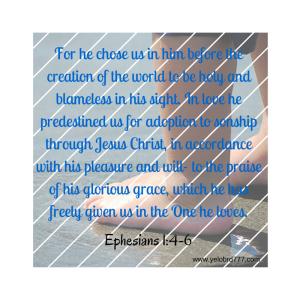 Ephesians 1_4-6