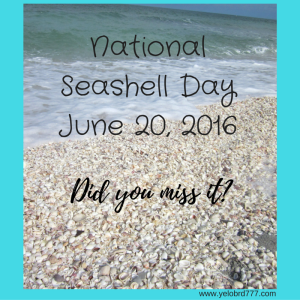 National Seashore DayJune 20, 2016-2