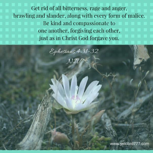 Ephesians 4_31-32