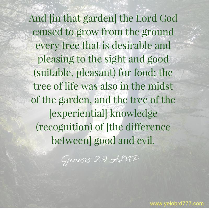 Genesis 2_9