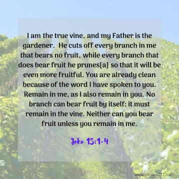 John 15-1-4